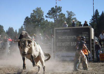 bullriding10
